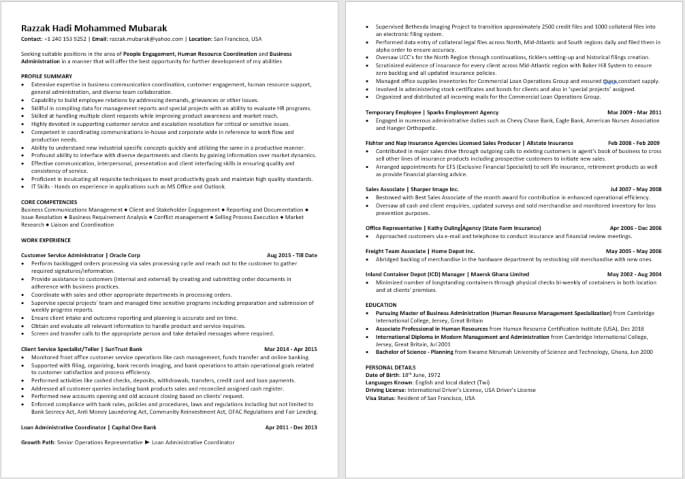 Recommended Digital CV Professional Sample