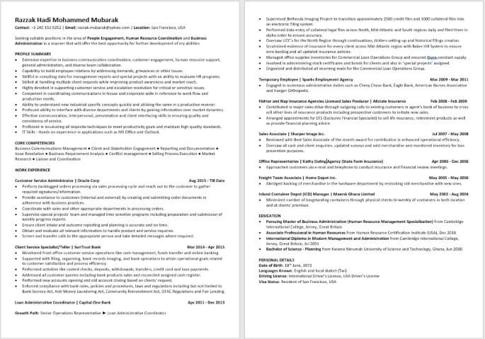 Recommended Digital CV Professional Sample