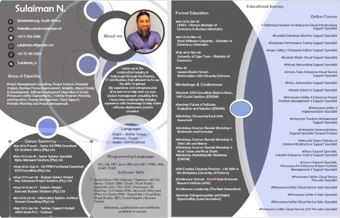 Top Infographic CV Writing Example