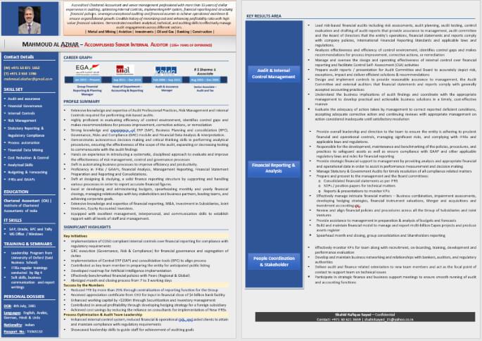 Leading Infographic Resume CV Sample PDF