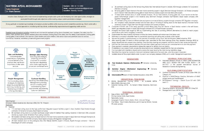 Best Infographic Resume Writing Example