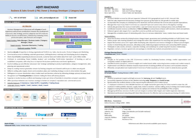Top Infographic Resume Writing Sample