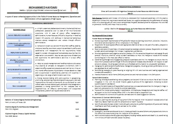 cv writing sample - Resume Writing Formats