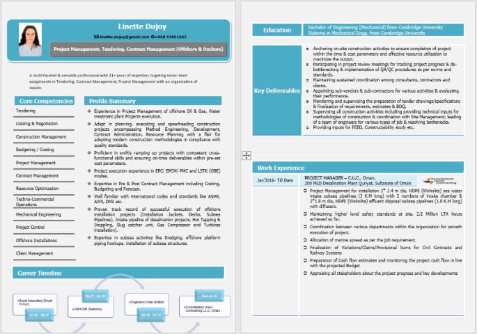 Visual Content Writing Resume Sample for Freshers
