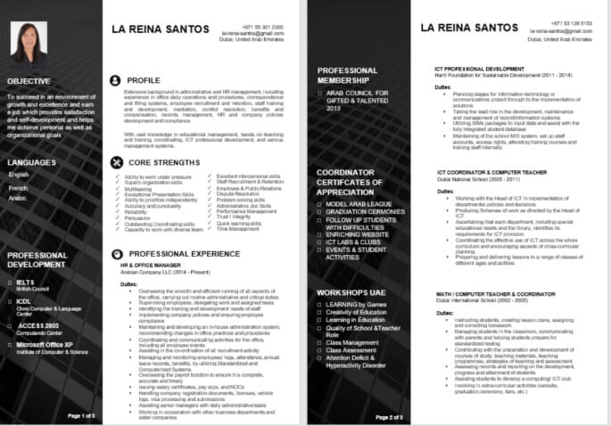 Best Visual Resume and CV Sample