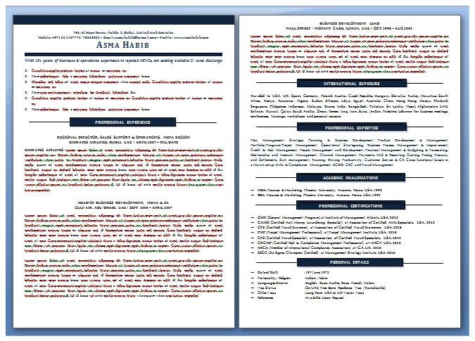 Abu Dhabi Resume Writing Examples