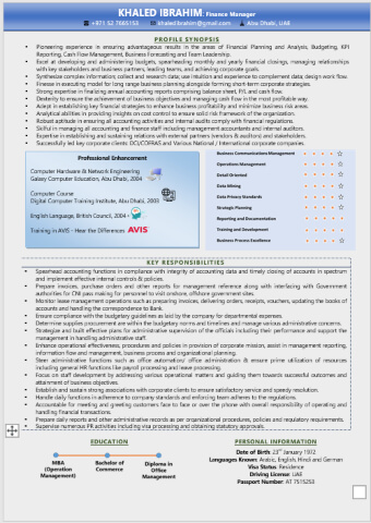 Infographic Resume Writing Format for Freshers