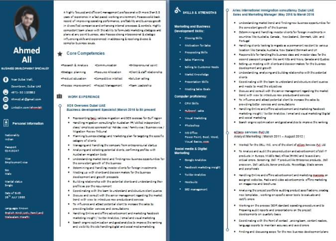 cv writing sample    templates